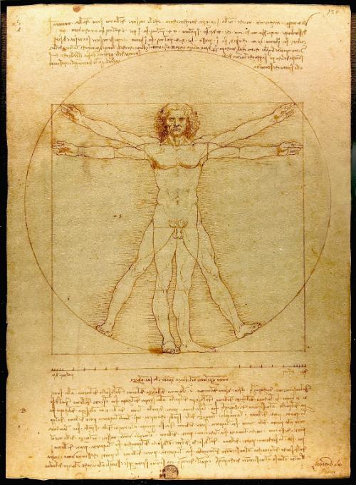 le vitruve de Da Vinci